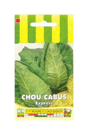 Les Graines Bocquet - Graines De Chou Cabus Express (Pointu) - Graines Potagères À Semer - Sachet De 3Grammes