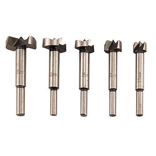 General Tools 299ST 5 Piece Forstner Drill Bit Set, 40R Steel, 1/4, 3/8, 1/2, 5/8, 7/8, and 1-inch bits