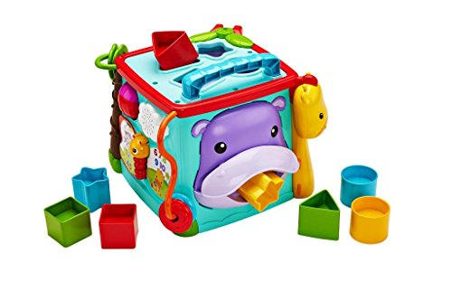 Fisher Price Bilingual Learning Box - DNY97