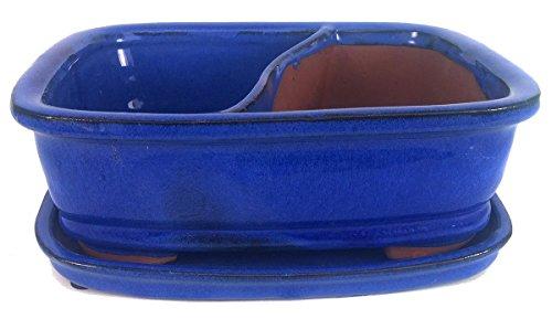 Land and Sea Ceramic Bonsai Pot with Saucer - 8' x 6.5' x 2' - Cobalt Blue