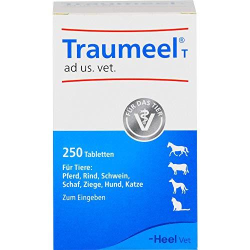 Traumeel T ad us. vet. Tabletten, 250 St. Tabletten
