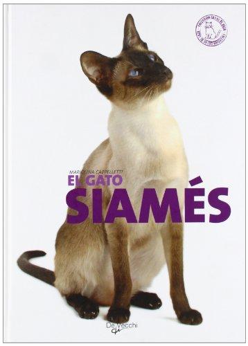 El gato siamés (Animales)