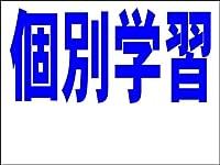 シンプル看板 「個別学習 余白付(紺)」<スクール・塾・教室> Mサイズ 屋外可(約H60cmxW45cm)