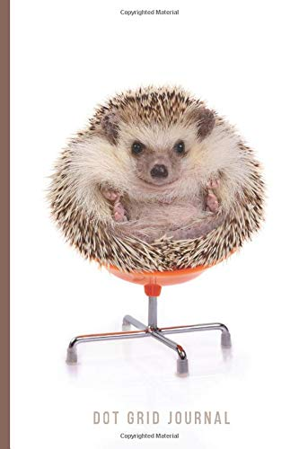 Dot Grid Journal: Funny Hedgehog on Orange Office Chair Cover / Small 6x9 Size / Design Book / Planner / Dotted Notebook / Great Gift for Drawing, ... and Crafty People / Cute Card Alternative