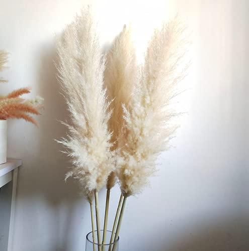 Grandes Decoraciones de Hierba de Pampa Seca, Ramos Naturales, Desde Tendencias Nupciales hasta decoración de Interiores (Colores Naturales)-Unos 98cm_5pcs