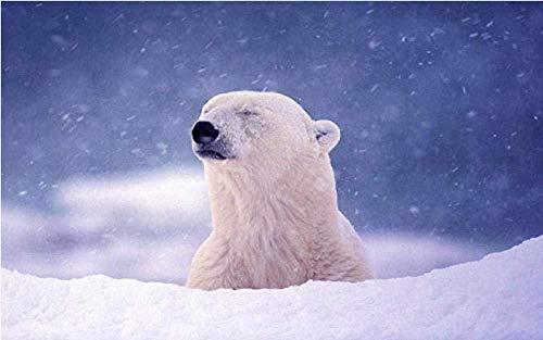 hjlwx Puzzle 1000 Pezzi Orso Polare innevato 70cmx50cm for Bambini Carattere Giocattoli educativi Adulti Gioco Creativo Puzzle Regalo Decorazione della casa di Natale