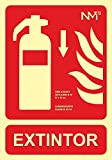 NM RD00104 - Señal Luminiscente Extintor Abajo Clase B...