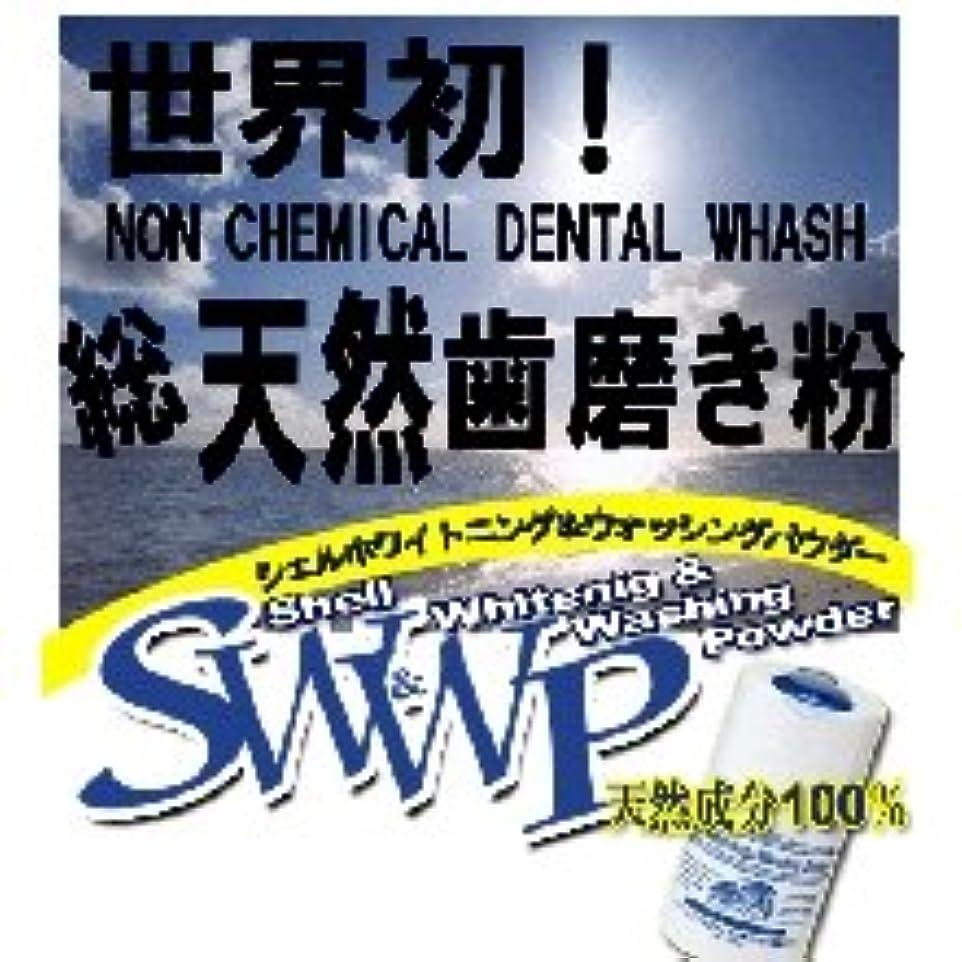 ラップトップ評決教育するShell Whitening & Whashing Powder シェルホワイトニングパウダー