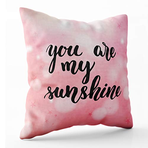 Shorping Throw Pillows for Couch, Zippered Covers Pillowcases 20X20Inch Throw Pillow Covers You are My Sunshine Pink Background for Home Sofa Bedding