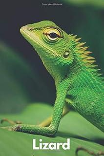 Lizard: Amazing Notebook