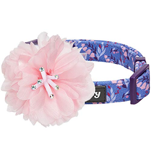 Blueberry Pet Floral Power Lily of the Valley Designer Dark Purple Dog...