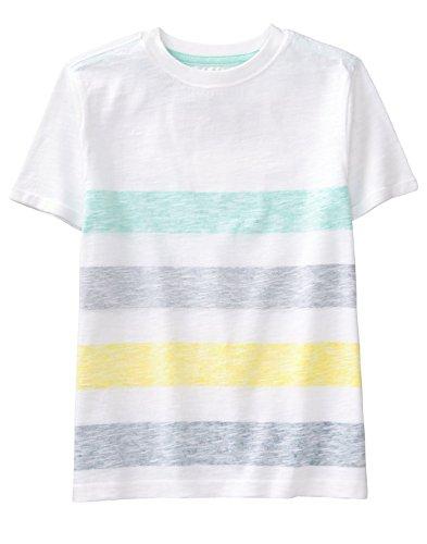 Gymboree Boys' Little Short Sleeve Printed Tee, Soft Teal Stripe, M