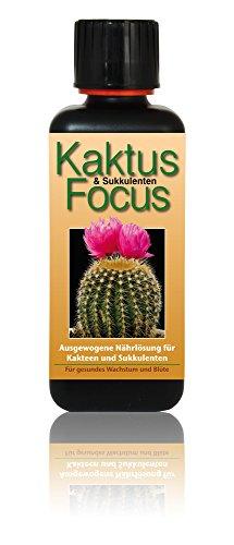 Dünger Kaktus Focus 300ml Flüssigdünger Konzentrat für Kakteen Flüssig Pflanzendünger