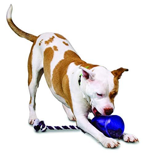 PetSafe Busy Buddy Tug-A-Jug Meal-Dispensing Dog Toy