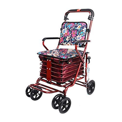 GWXTC Faltbarer Bollerwagen Klappwagen, Multifunktions-Old Man Pushable Warenkorb 4 Räder Lebensmittel einkaufen Gehhilfe Ruhesitz Einkaufswagen bewegen, Belastung: 100 kg (Color : C)