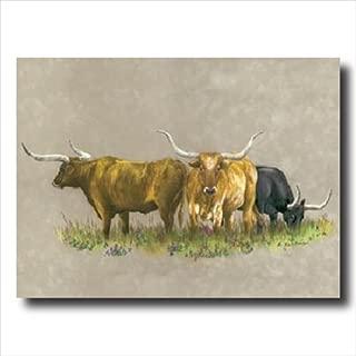 Texas Longhorn Steer Cattle Western Animal Wall Picture 16x20 Art Print