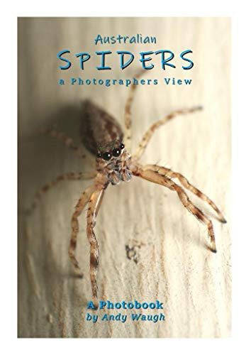 Australian Spiders: a Photographers View (English Edition)