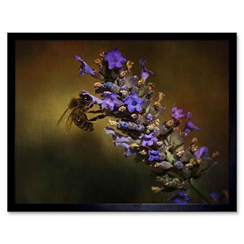 Wee Blauwe Coo Fotografie Samenstelling Honing Bee Bloem Bloemblaadjes Art Print Ingelijste Poster Muurdecoratie 12X16 Inch