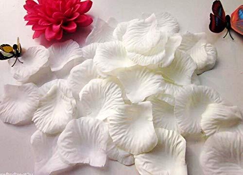 CHSYOO 1000 x Rose Artificiali Foglie Rose Fiori Confetti, Decorazione Romantica Accessori per Matrimonio Compleanno Festa Festa San Valentino Fidanzata Appuntamento Proposta Matrimonio, Bianca