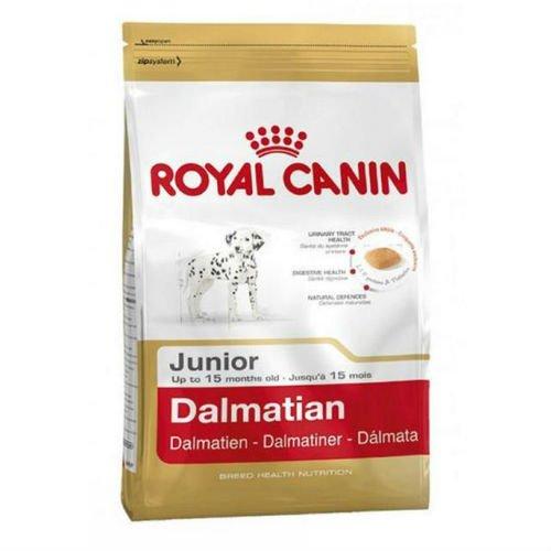 Royal Canin Hundefutter Dalmatiner Junior, 12 kg