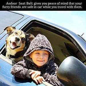 Aodoor Auto Hunde Sicherheitsgurt - 5