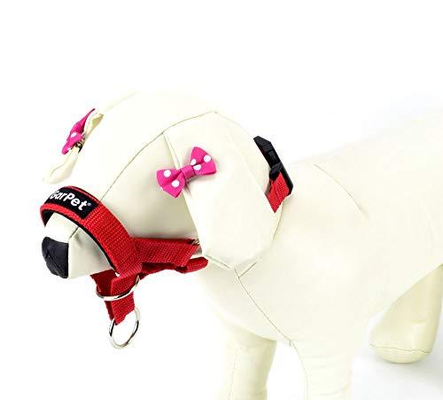 Hunde Erziehungshalsband Ausbildungshalfter Antizug Halfter Erziehungsgeschirr (rot, Gr.2)