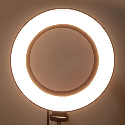 Gaeirt Luz de Video LED Luz de Relleno de fotografía con luz Natural para Estudio en Vivo