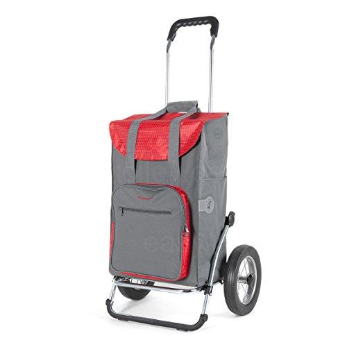 Andersen Einkaufstrolley Royal mit Metallspeichenrad 25 cm und 45 Liter Einkaufstasche Wismar grau/rot mit Kühlfach Einkaufswagen Stahlgestell klappbar