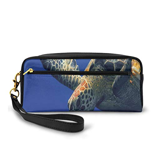 Pencil Case Pen Bag Pouch Stationary,Close Up Photo of Green Turtle at Sipadan Borneo Malaysia Cute Animal Under The Sea,Small Makeup Bag Coin Purse