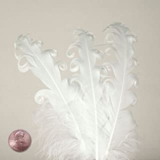 White Nagorie Goose Feathers, 5