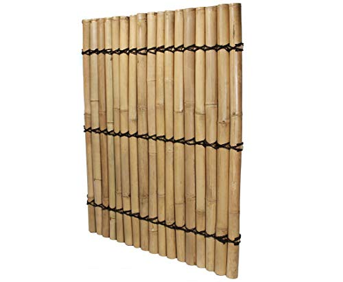 Bambus Sichtschutzzaun Apas4 gelblich, 150 x 120cm von Bambus-Discount