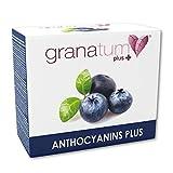 Granatum Plus | Zumo de Arándano Concentrado (65 °Bx) | Extracto de Arándano | Antocianinas Plus | Complemento alimenticio | (30 sobres bebibles monodosis de 20 gr. Peso Neto 600 gr.)