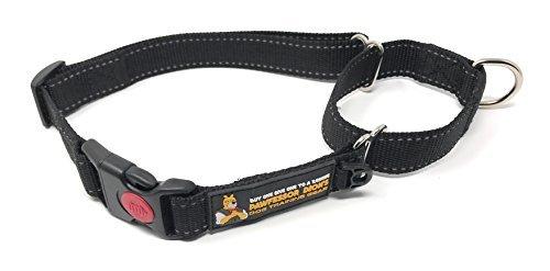 kaufen One geben, zu einem Rescue pawfessor Dion des Dog Training Gear Reflektierende Nylon Martingal pawfessor Dion 's Training Hundehalsband, kaufen, und wir Spenden One to a Dog Rescue, XS, schwarz