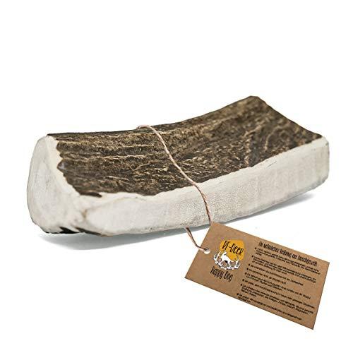 RF - DEER Elchgeweih | Geweihstück Größe XL | natürlicher Geweih-Kausnack für Hunde | gesunder Kauspielzeug | Kauknochen für Genuss und Zahnpflege | Hard Version