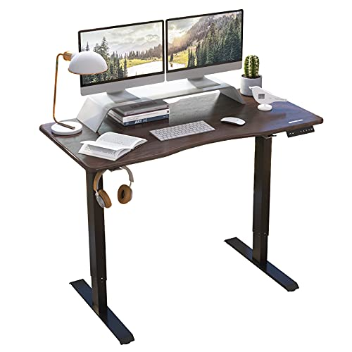 HARBLAND Electric Standing Desk Sit Stand Ergonomic Uplift Rising Desk with Dual Motors One-Piece Table Top, 48 x 24 inches Rustic Brown