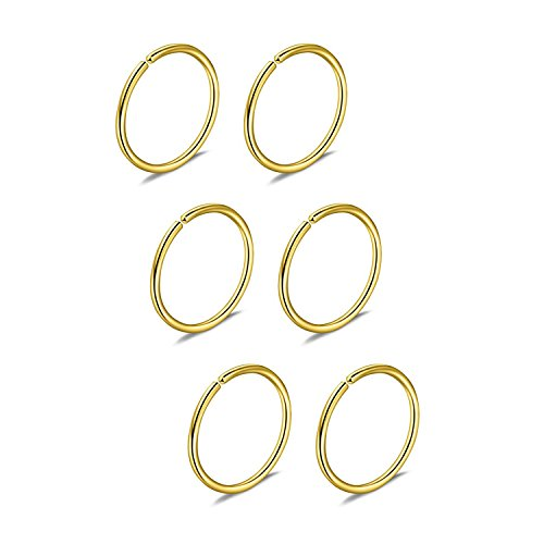 Briana Williams 6pcs Fake Nose Ring Hoop Septum Tragus Cartilage Earring Hoop Piercing 22G 20G 18G 16G 6/8/10/12mm Stainless Steel Faux Piercing Jewelry