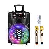TOPQSC Karaoke Party Speaker Sistema PA Mobile 12 pollici, Altoparlante Amplificato Portatile con Bluetooth MP3 2 microfoni wireless 300w, altoparlante per macchina karaoke, ideale per feste a casa