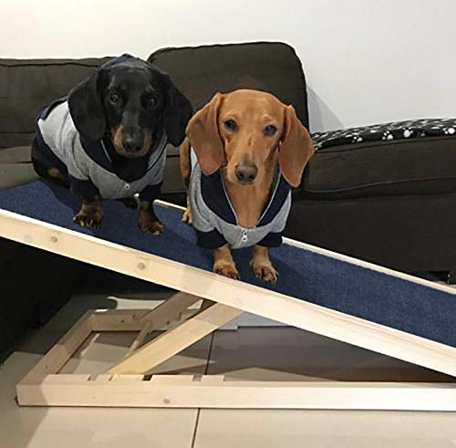 Great for Cars All For Paws Folding Pet Ramp Dog and Cat Ramp Lightweight Portable 157 x 42 x15CM Weight Capacity 100kgs Trucks and SUVs