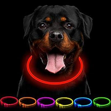 【SCHNITT FÜR JEDE GRÖSSE】 - KEIN Geld mehr für den Kragen mit der falschen Größe verschwendet. Unser Hundehalsband in Premiumqualität kann auf jede Hunderasse und -größe zugeschnitten werden (70 cm Länge - zugeschnitten). 【HOHE SICHTBARKEIT】 - Bestel...
