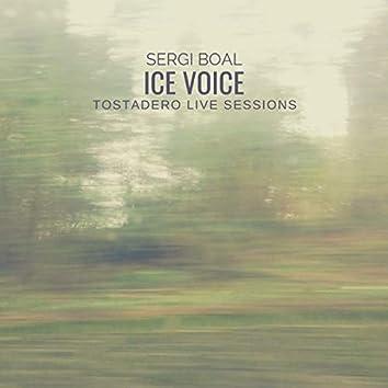 Ice Voice (Live)
