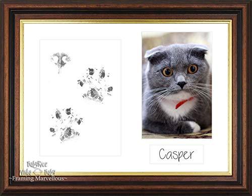 Anika-Baby Cat Animal Patte pattes kit en acajou Doré Cadre photo de chaton Cadeau mémoire empreintes personnaliser vous-même
