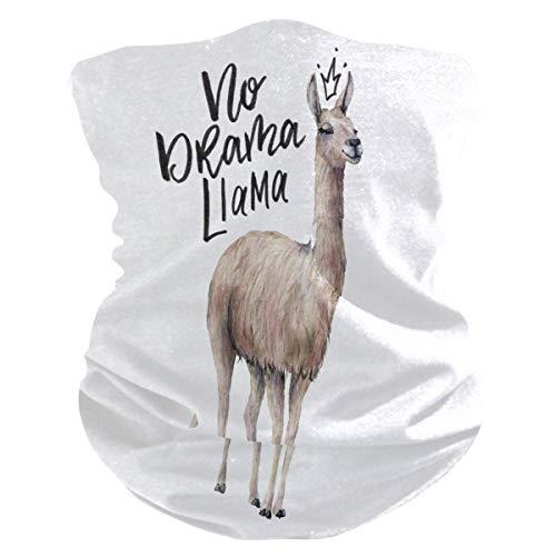 Lachend Bivakmuts Gezichtsmasker met Lama-Print, Anti-Druppel Windbestendig Multifunctioneel Masker voor Buiten Fietsen