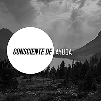 # 1 Album: Consciente de Ayuda