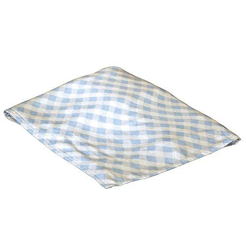 Cobertor de cueiro de rayon da Applesauce, xadrez azul
