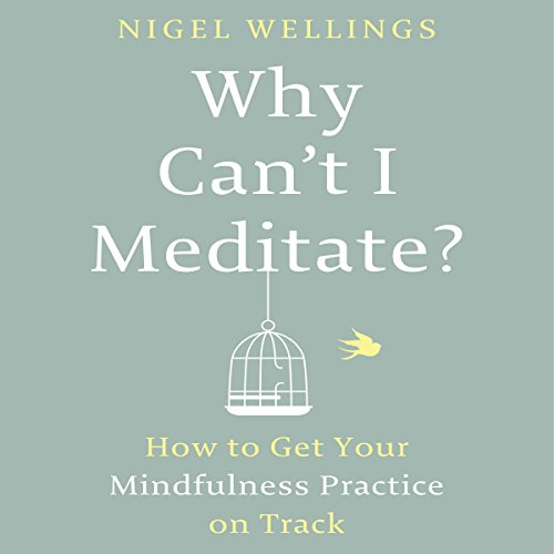Why Can't I Meditate? audiobook cover art