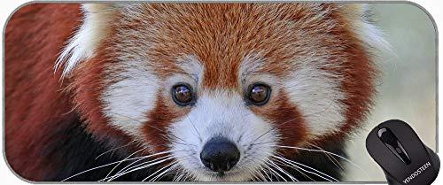 XXL große größe mauspads, Python Tier Panda rutschfeste Gummi Mousepad