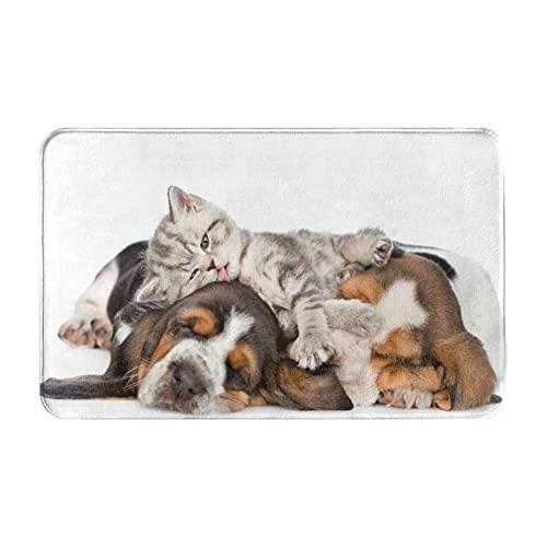 CONICIXI Felpudo Entrada Casa Rectangular Gracioso Gatito acostado sobre los Cachorros Basset...