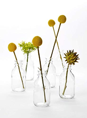 "Serene Spaces Living 6 Glass Vintage Mini Milk Bottles – Elegant Vases for Floral Arrangements at Weddings, Events, Parties, 4.25"" Tall by 2"" Diameter"