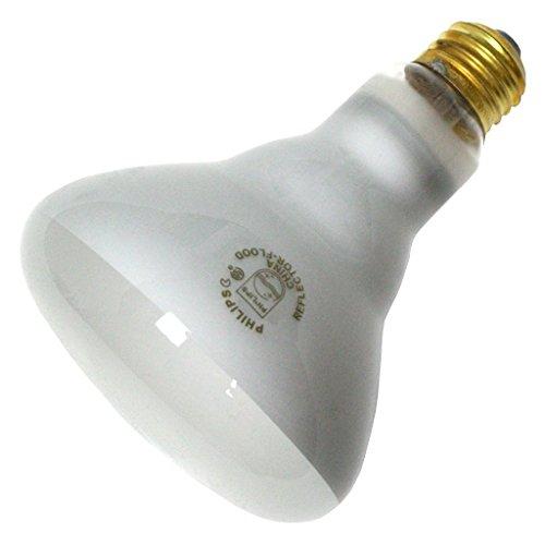 Reflector Bulb - 3