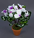 Alpenveilchen 36cm weiß-lila im Topf ZF künstliche Blumen Kunstpflanzen Kunstblumen Cyclamen